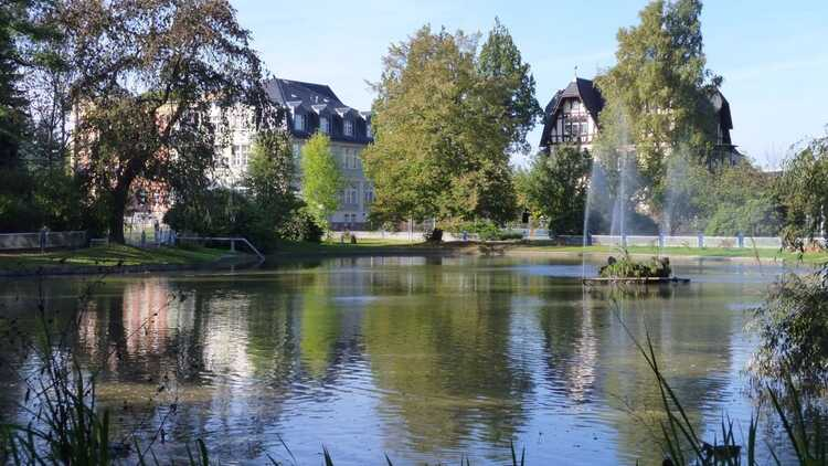 Wettinhain Burgstädt - Foto: HVV