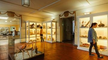 Naturkundemuseum Mauritianum - Foto: Simon Büttner
