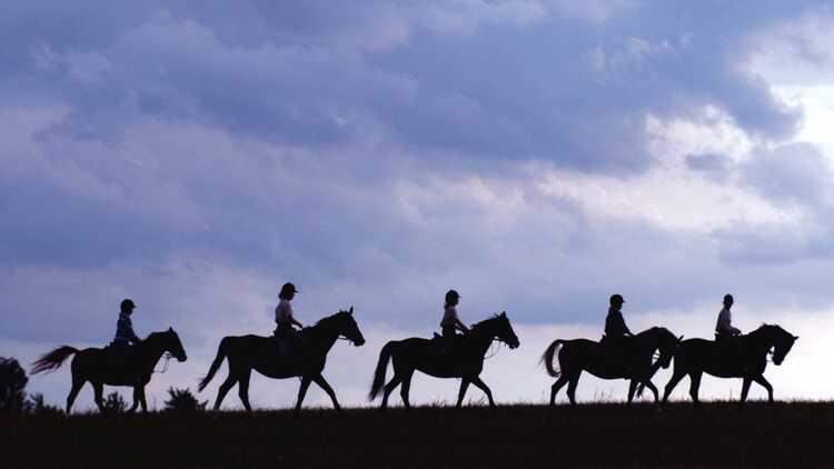 Mit Pferd unterwegs - Archiv HVV