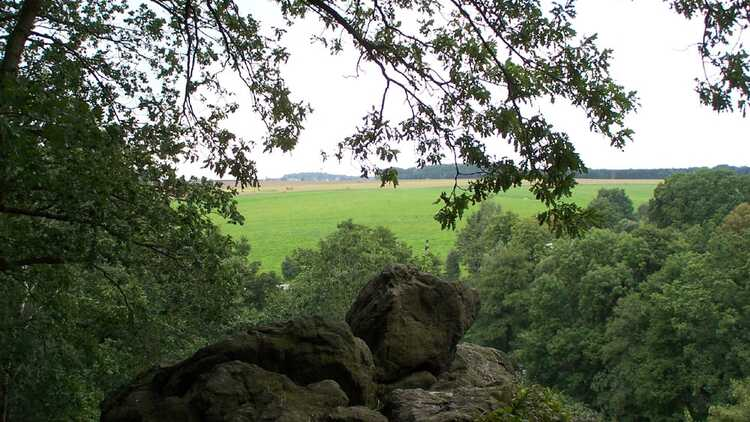 Naturlehrpfad Markersdorf - HVV