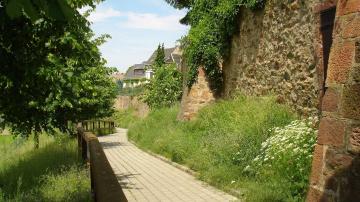 Stadtmauer Geithain - Foto: Ramona Kratz