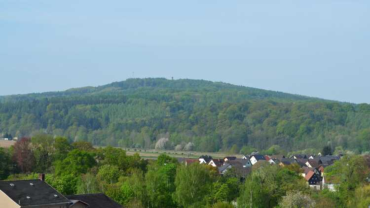 Blick zum Rochlitzer Berg - Foto: Heidrun Verba